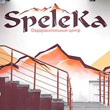 Вторая версия оформления фасада оздоровительного центра «Speleka»