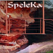 Оформление фасада оздоровительного центра «Speleka»